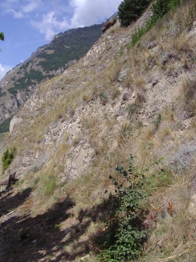 Un petit tour dans les steppes suisses... Pa290013
