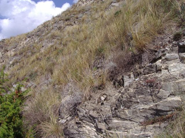 Un petit tour dans les steppes suisses... Pa290014