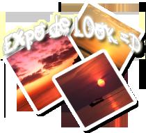 Galerie graphime de L0ok Expo10