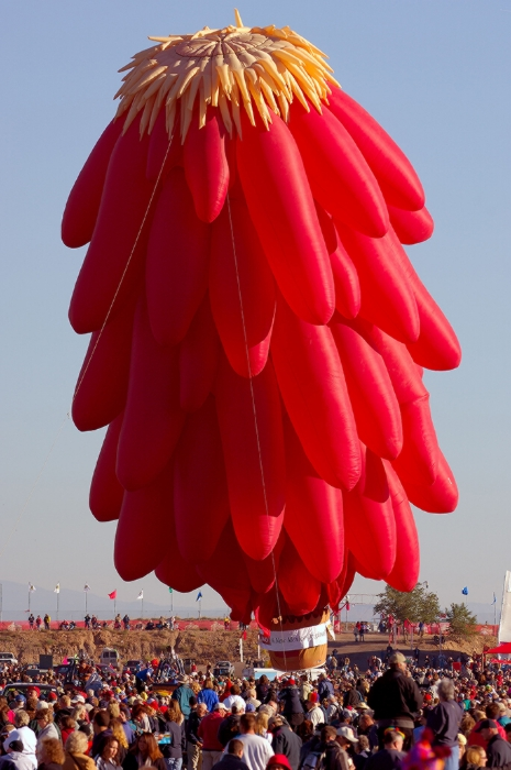 De bien droles de mongolfieres ... Ballon11