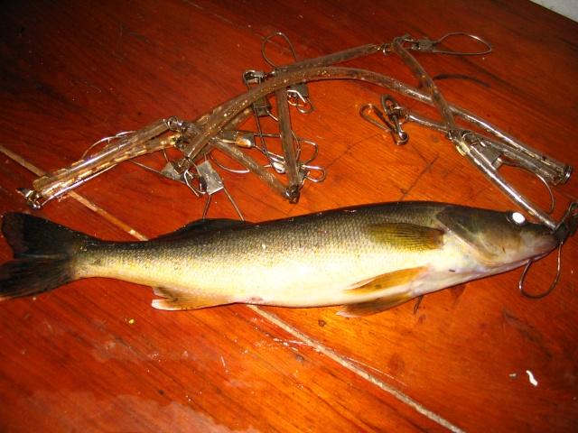 Photos de pêche d'Abitibi. Img_0017