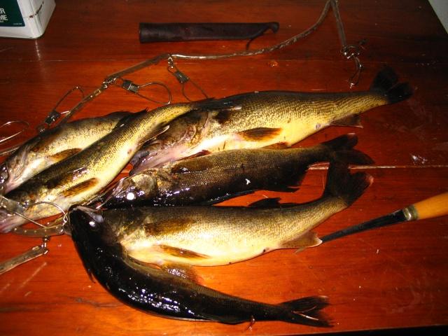 Photos de pêche d'Abitibi. Img_0020