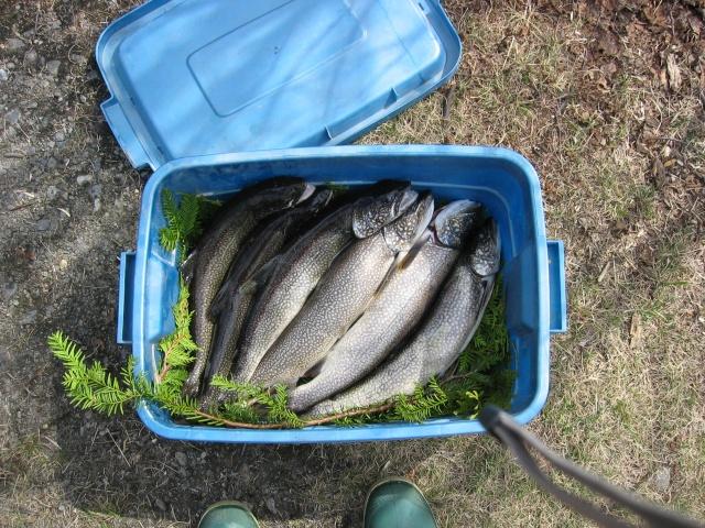 Photos de pêche d'Abitibi. Img_1310