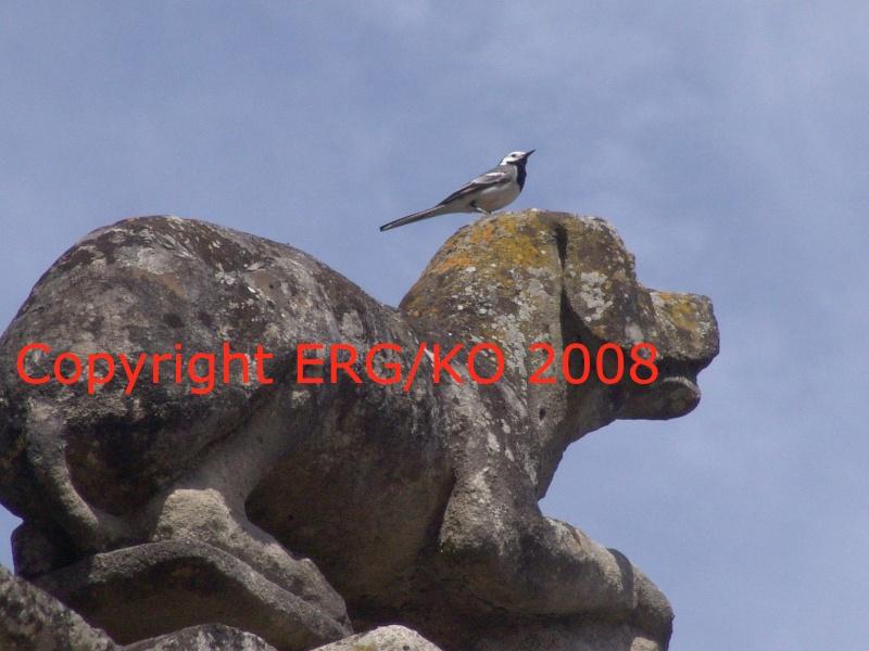 Enquête au Château fantastique de Raray Dsc02014