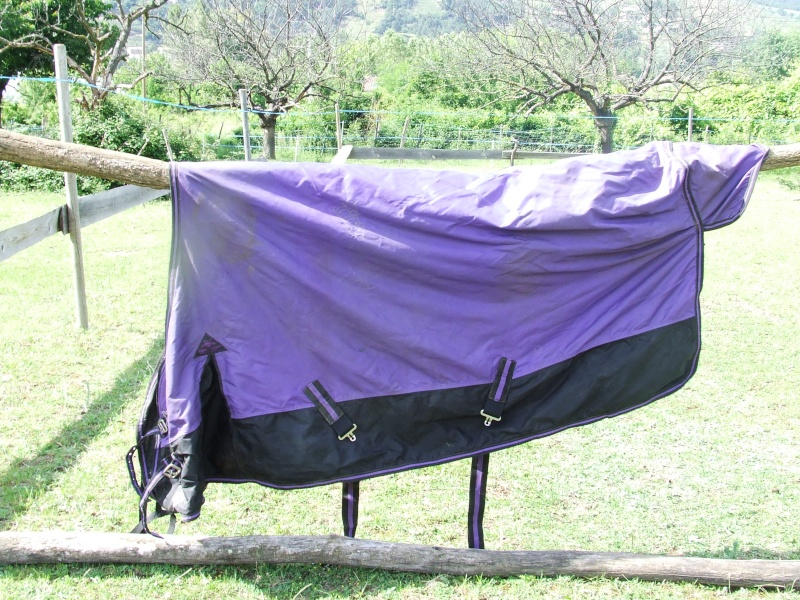 Matériel d'équitation, t.cheval, travail et repos Dscf6720