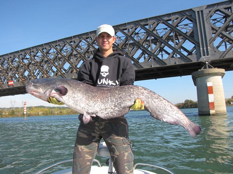 Quelle poisson vous a marquez le plus durant cette année 2011 ? Camarg44