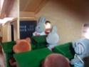 L'école des forest families ! 100_0713