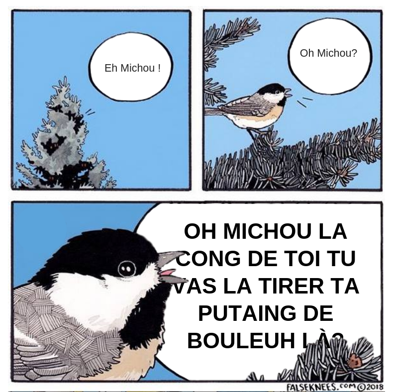 LE GRAND FOURRE-TOUT - Page 4 Michou11