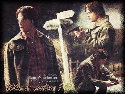 Winchester Boys  28528611
