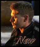 Jensen Ross Ackles 29589010
