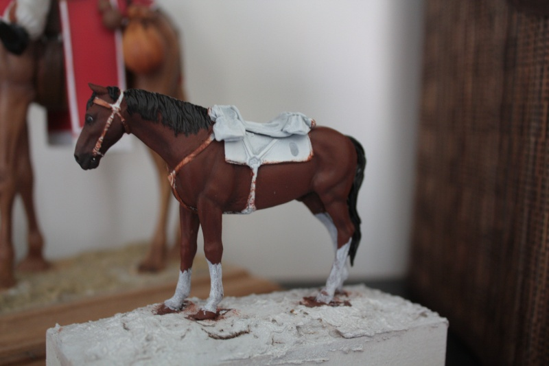 US Cavalry sergent (Romeo models) Img_1110