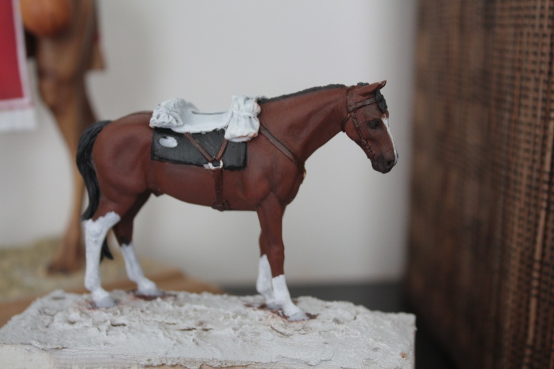 US Cavalry sergent (Romeo models) Img_1112