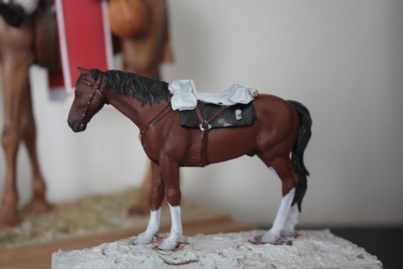 US Cavalry sergent (Romeo models) Img_1113
