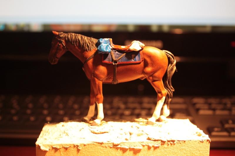 US Cavalry sergent (Romeo models) Img_1310