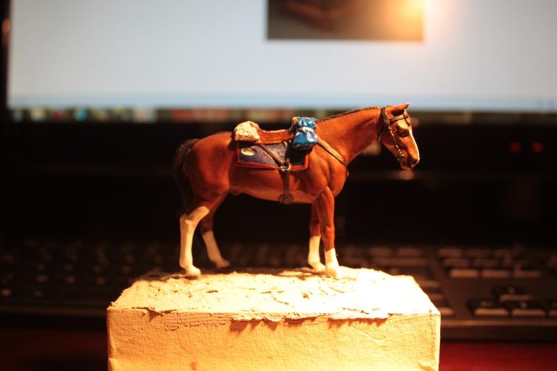 US Cavalry sergent (Romeo models) Img_1311