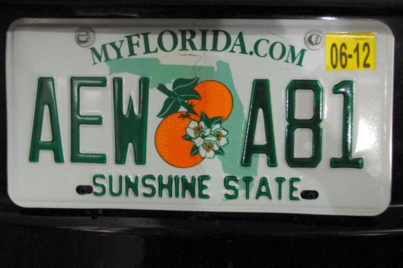 15 jours en Floride : seaworld, IOA, animal kingdom et discovery cove Voyage14