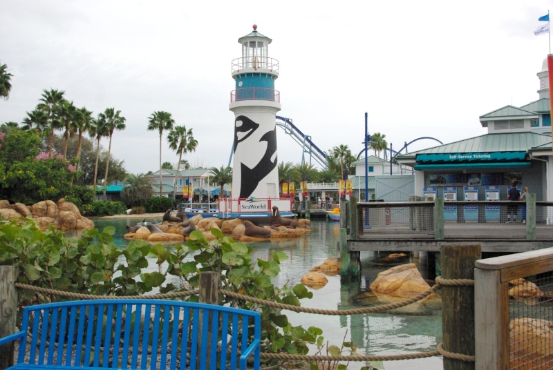 15 jours en Floride : seaworld, IOA, animal kingdom et discovery cove Voyage19