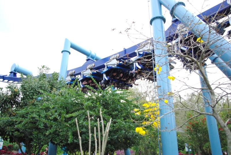 15 jours en Floride : seaworld, IOA, animal kingdom et discovery cove Voyage21