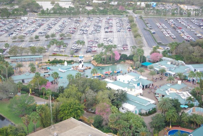 15 jours en Floride : seaworld, IOA, animal kingdom et discovery cove Voyage24