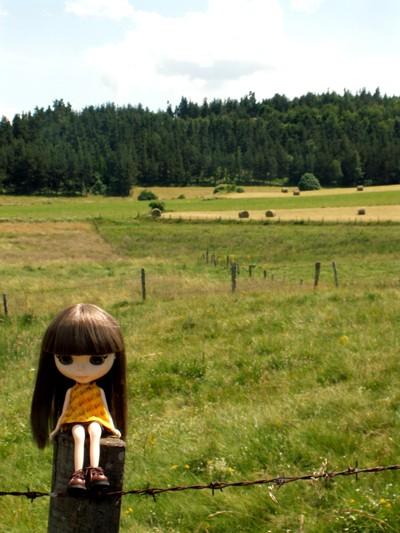 [juillet / août 2008] les vacances ! Pict0030
