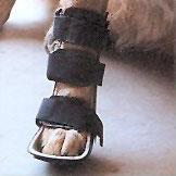 Attelles pour pattes avant et arrière Attell11