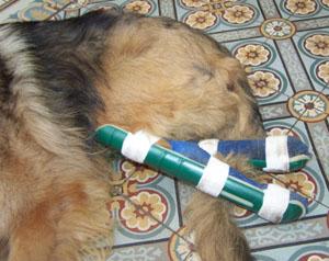Une idée... (22 juillet 2008) Avec-a10