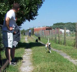 Rencontre avec les chevaux (14 juillet 2008) Course10