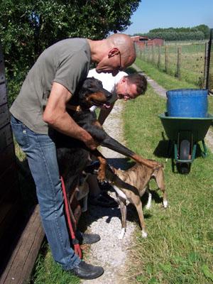 Rencontre avec les chevaux (14 juillet 2008) Debout14