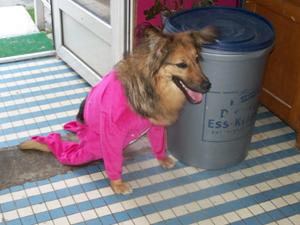 Séance d'essayage pour TCHARA (21 juin 2008) Pyjama11
