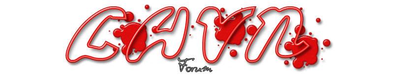 LHVN LHVN est un site de gestion d'une équipe d'ho Lhvn_b10