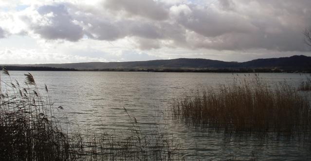 Lac de Madine – Grand lac public – La Meuse (55) Madine13