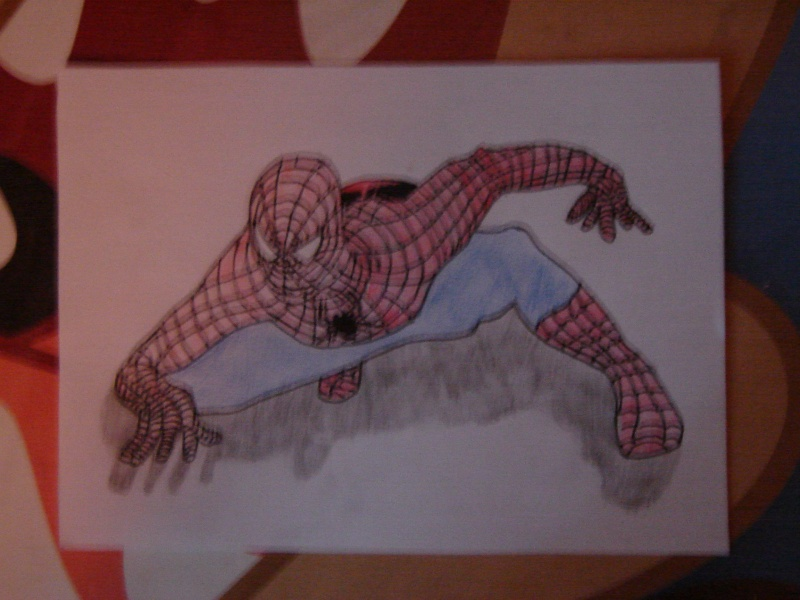 l' homme araignée Dsc02910