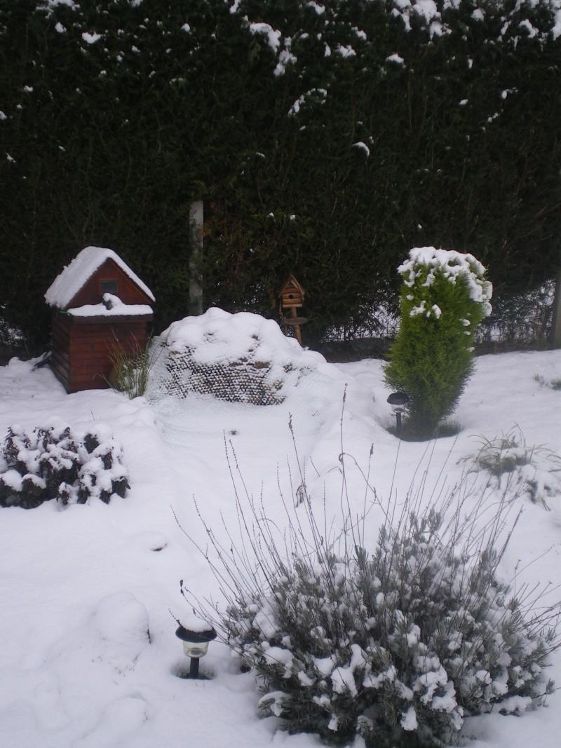 neige dans l'oise Imgp2311