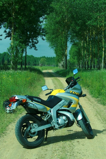 ma moto 125 tdr Img_0011