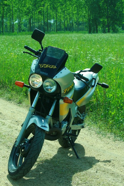 ma moto 125 tdr Img_0013