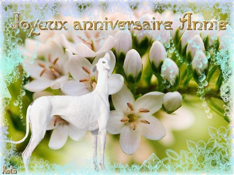 Joyeux Anniversaire Annie Duquesne Salle Des Fetes Nimo