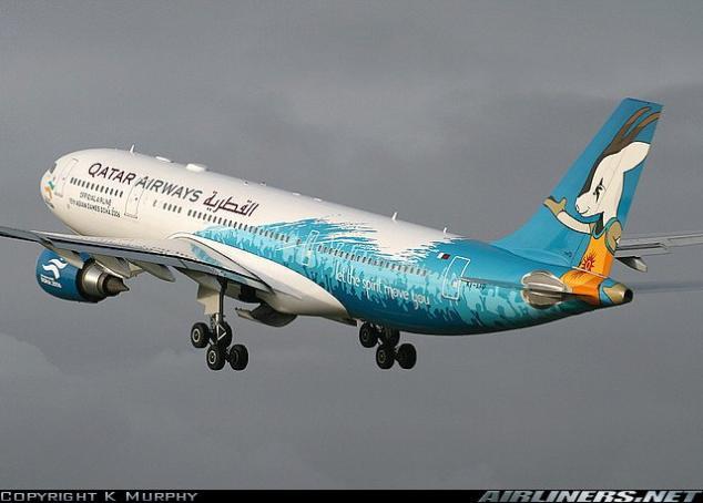 صور لطائرات مرسوم عليها رسوم متحركة A_00410