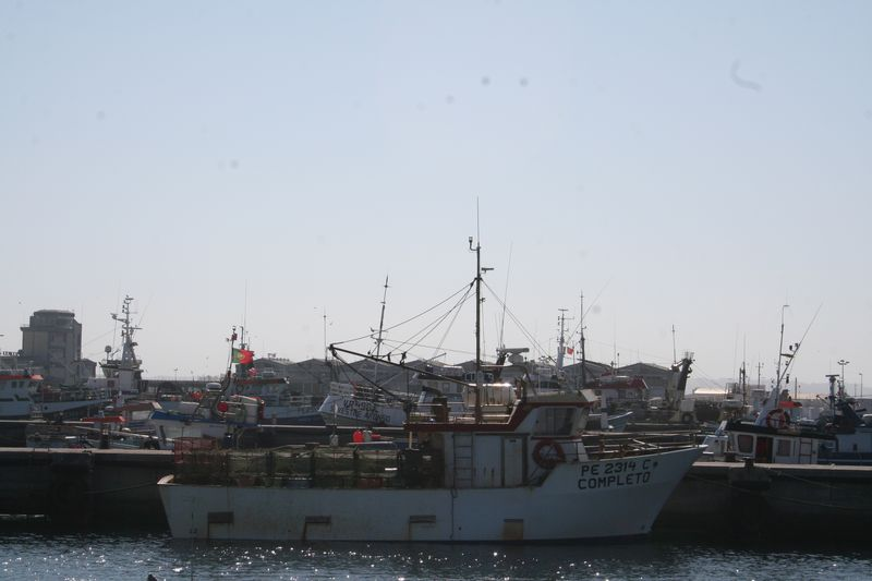 Mergulho nas Berlengas 28JUN2008 Img_6283