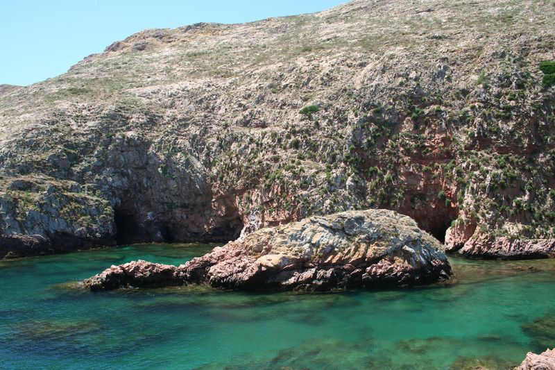 Mergulho nas Berlengas 28JUN2008 Img_6327