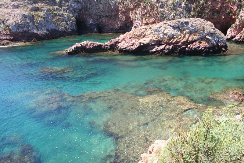 Mergulho nas Berlengas 28JUN2008 Img_6329