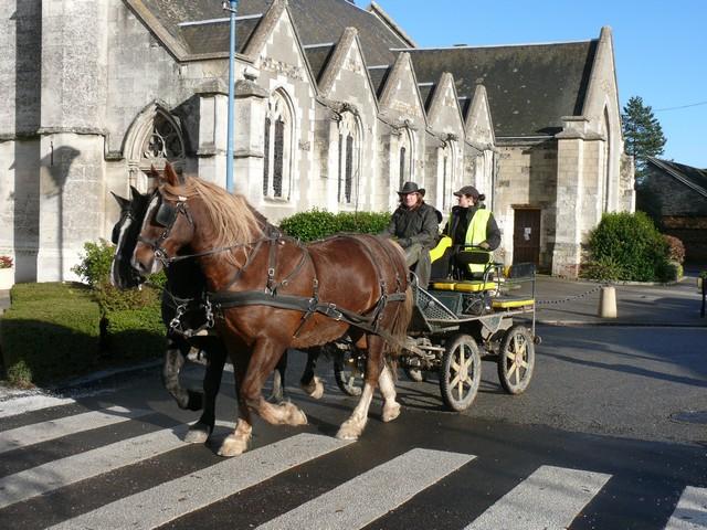 """""""Route du Hareng 2012"""" P1360012"""