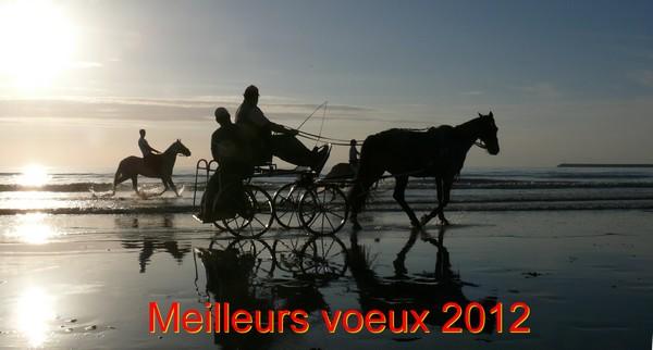 Une bonne année 2012... Voeux_10