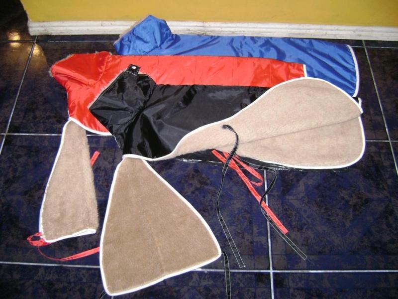 Morrales y Capas Dsc00120