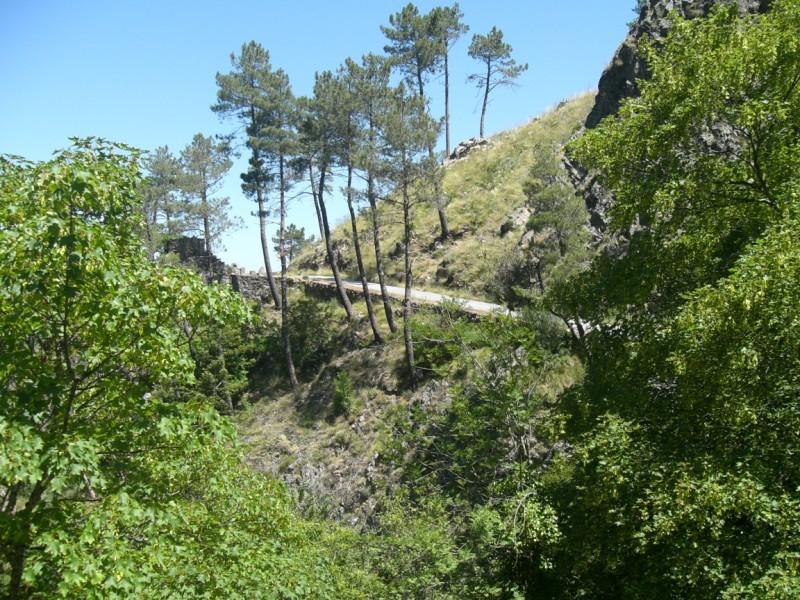 Crónica do Mine-Encontro Serra da Estrela - 29 Junho de 2008 Cimg2021