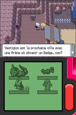 Pokemon Perle [DS] Pokemo20