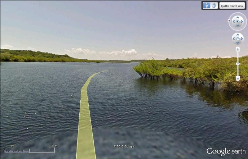 Street View : Rive du Rio Negro - Brésil Brasri10