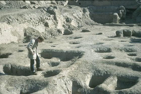 Trous de la vallée de Pisco, Pérou Captu114