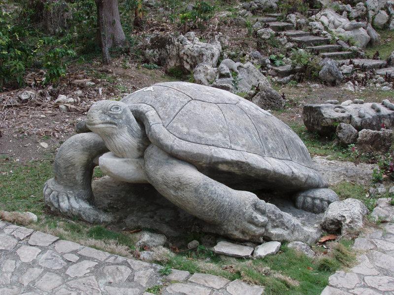 Zoológico de Piedra - Guantanamo - Cuba Gnt30311