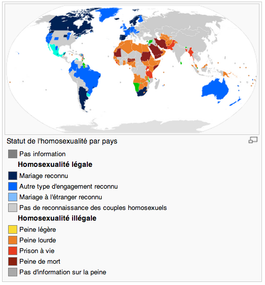 L'homosexualité en question Screen32