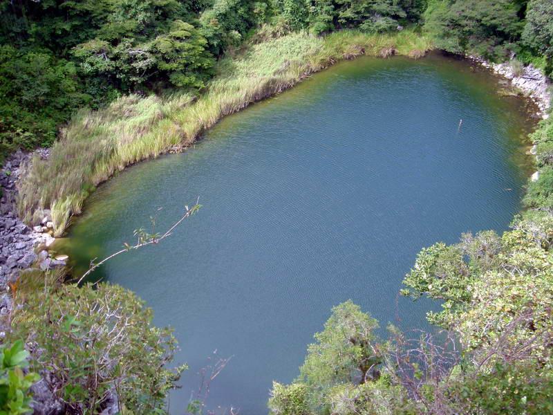 cenotes en chiapas ¿posible? 82483310